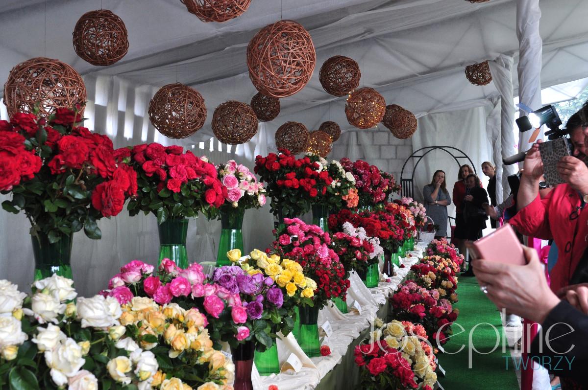 Święto róż w Końskowoli